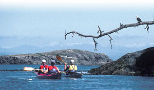 Sea kayaking with Northern Lights Expeditions, in BC.