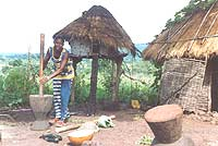 A typical scene in a Peace Corps village, a woman pounds casava leaves outside her hut.
