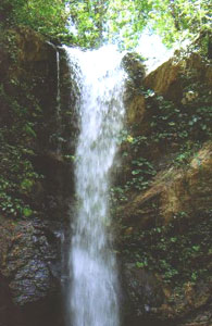 The Petite Marianne Waterfall is a great spot to cool off after a hike through the rainforest in Trinidad.