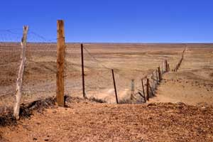 The dog fence, built in the 1800s to control the dingo population, is a stop on Radeka's Desert Breakaway Tour.