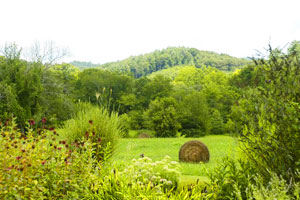Bucolic Western North Carolina is where the John C. Campbell Folk School offers 869 courses in folk art and music. Photo by John Bugba