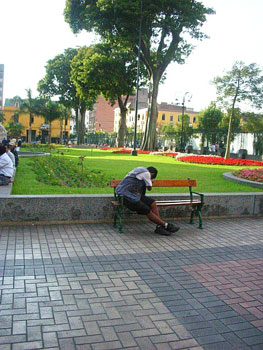 The well-tended flower beds of the Plaza de Armas offer a tranquil place to rest.