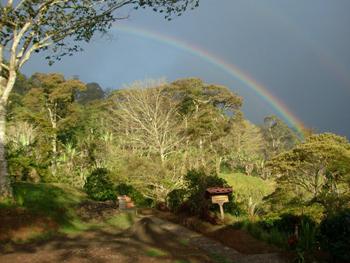 Rainbow over La Bastilla Farm, Nicaragua.