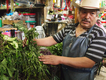 Medicinal herb seller in San Angel mercado.