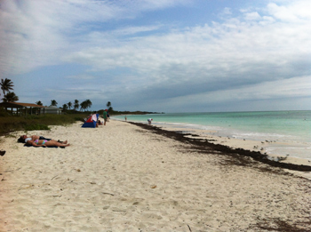 The pretty and deserted beach at Bahiahonda, Florida.
