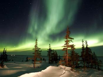 Northern Lights, Churchill, Manitoba. Janis Turk photo.