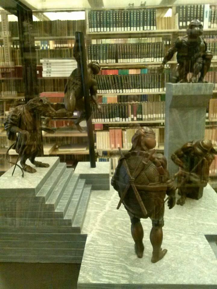 tmnt du bois library