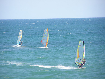 Windsurfing in Brighton.