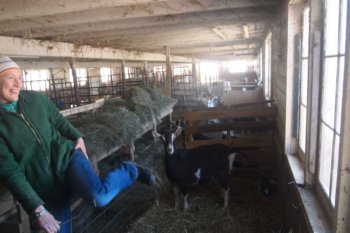Hannah Sessions of Blue Ledge Farm, Salisbury Vermont.