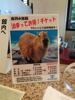 capybara-calendar