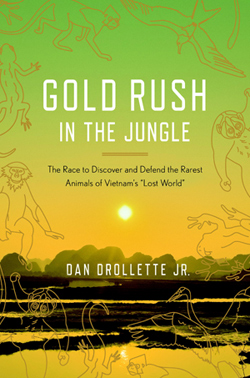 gold-rush-in-the-jungle