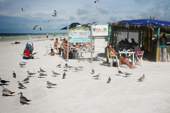 Beach bar at Isla Holbox, just the opposite of Cancun. John Henderson photos.