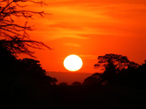 The famous African sunset, which doesn't last long.