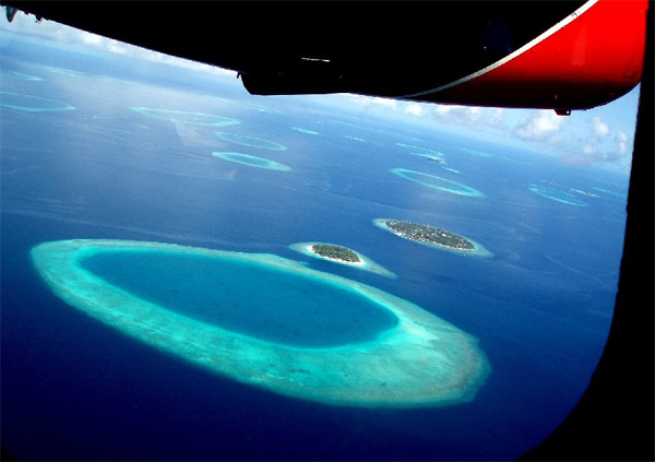 airplane view of the Maldives.