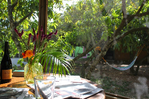 Digital detox at a farm called Paradise in South Florida. Mary Nelen photos.