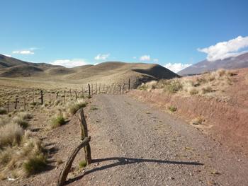 The arid climate outside of Salta, Argentina. Lydia Carey photo.
