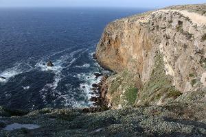 Cliffs in Potato Harbor, Santa Cruz.