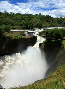 The Nile River takes a spectacular plunge at Murchison Falls, the roar of the tumbling water is so intense you can hardly hear yourself speak.