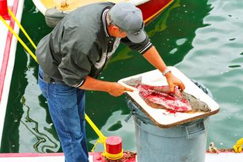 Catalina fisherman. photos by Jason McKenney