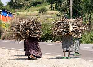 Impossible loads - Woman carry wood in Ethiopia.