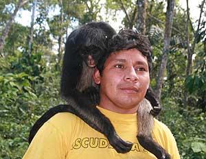 Playing with monkeys at the Fundación Los Monos Selva y Vida.