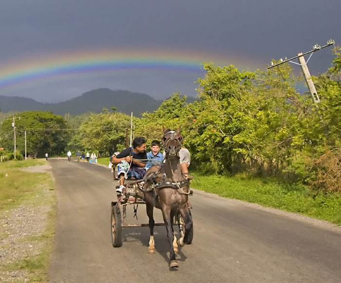 A horsecart near Cajobado, Cuba. Photos by Matthew Kadey.