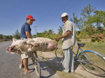 Bicycle barbeque in Cuba