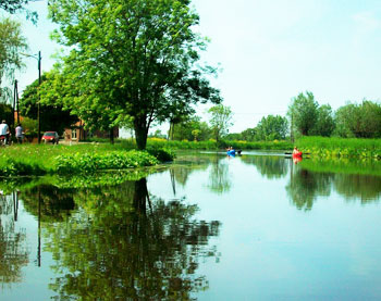 One fifth of the Netherlands is water.