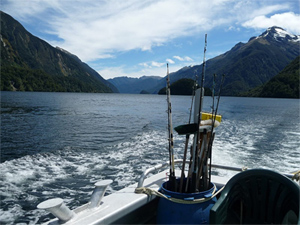 View from the stern of the Seafinn. photo by Cindy Bigras.