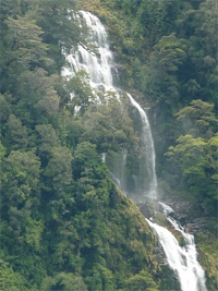 Waterfall in Doubtful Sound. photo by Cindy Bigras.