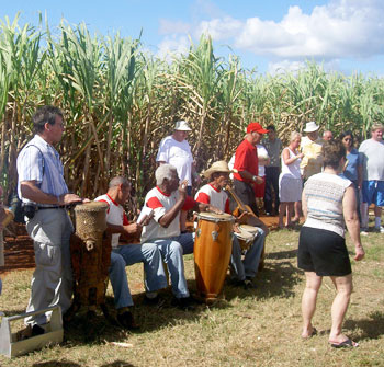 Dancing in the sugar cane fields at the Taino Village Cuba.
