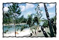 Vanuatu: GoNOMAD DESTINATION MINI GUIDE