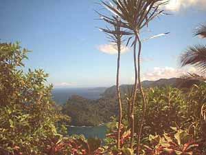 Maracas Bay, Trinidad. photo: Nadia Ali