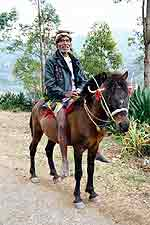 At the foot of Mt. Ramelau, a Mambai man rides his Timor pony to market.