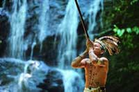 Borneo: Terrific Values, Exotic Jungles, No Headhunters