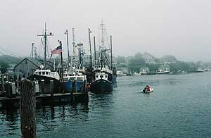 Harbor at Nova Scotia. photos by Kent E. St. John.