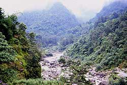The little Rankit River near Karmi Farm.