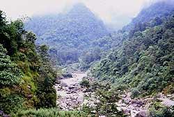 The little Rankit River near Karmi Farm.