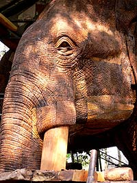 Giant elephant carving made of wood.