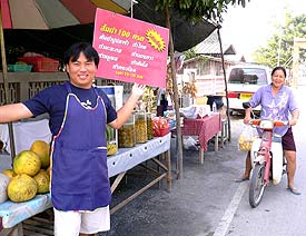 Roadside stand in Chiang Mai Thailand. photos by Terry Bravermann.