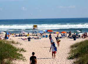 Visit the Hamptons! Rogers Beach in Westhampton, on Long Island in New York.