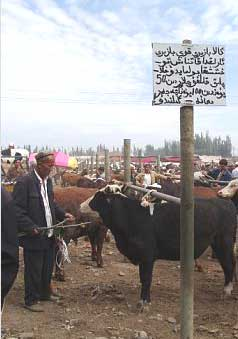 An Uighur sign in the market at Kashgar