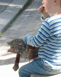 Lots of Parisian children carry a 'dou-dou'.