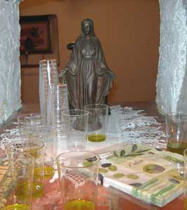 An olive oil tasting in Istria