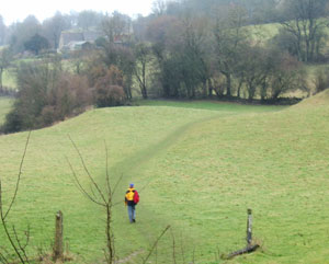 The walking trails in the Cotswolds sometimes take you through lovely meadows like this one.