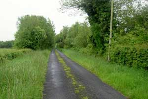 We biked mainly on country roads like this one.