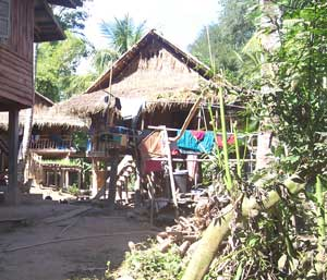 Hmong village house