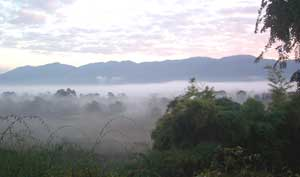 A mist-enshrouded valley in Thailand's Golden Triangle near the Laos border
