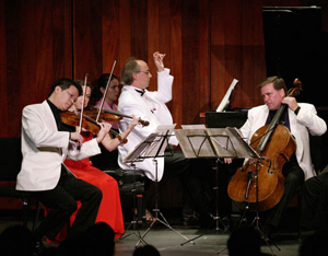 A performance of Strings in the Mountains