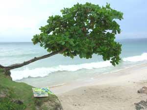 The Dominican Republic: Tropical Terrains and Pristine Beaches